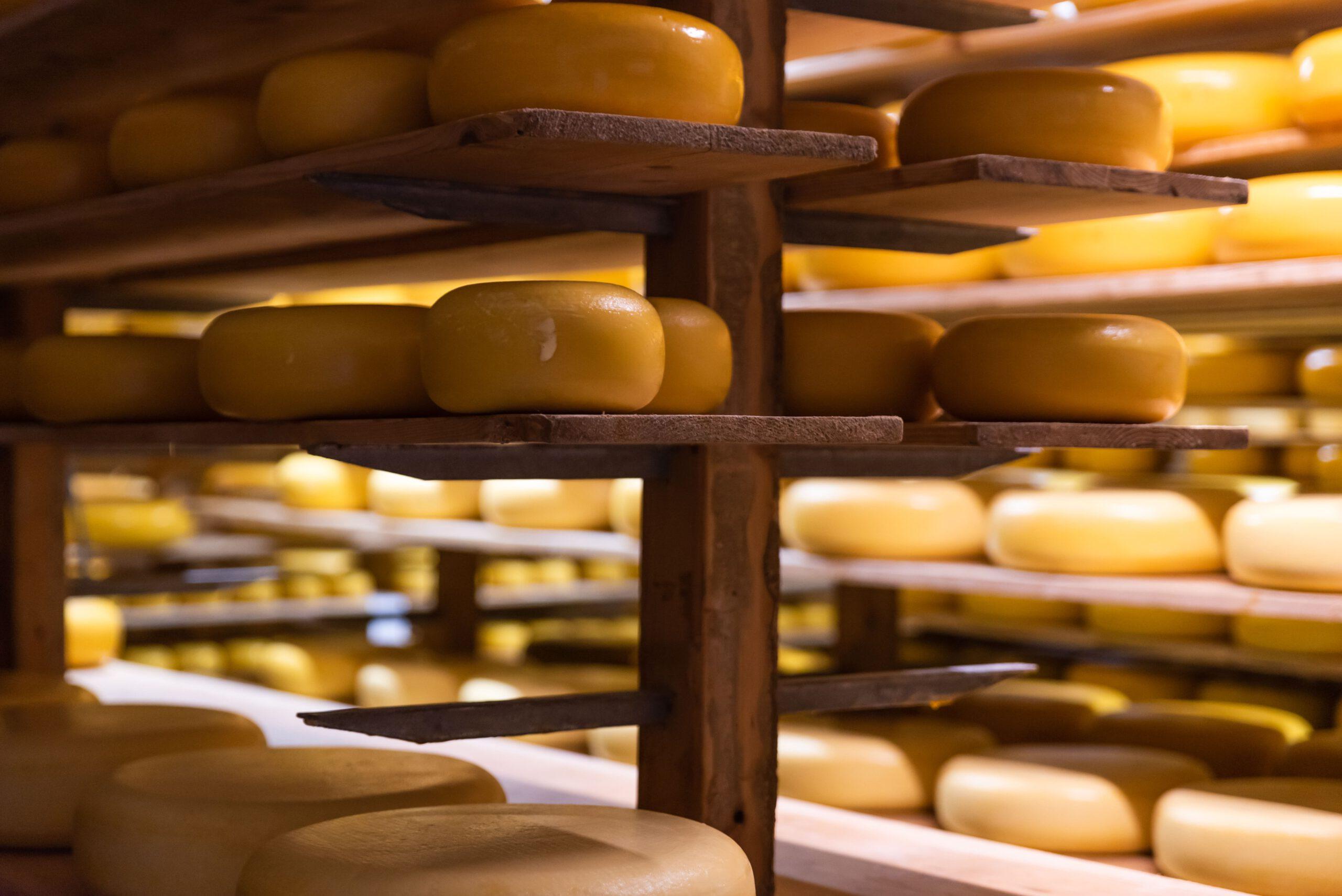 Kaas van de boerderij | Kaasboerderij Speksnijder | Online kaaswinkel