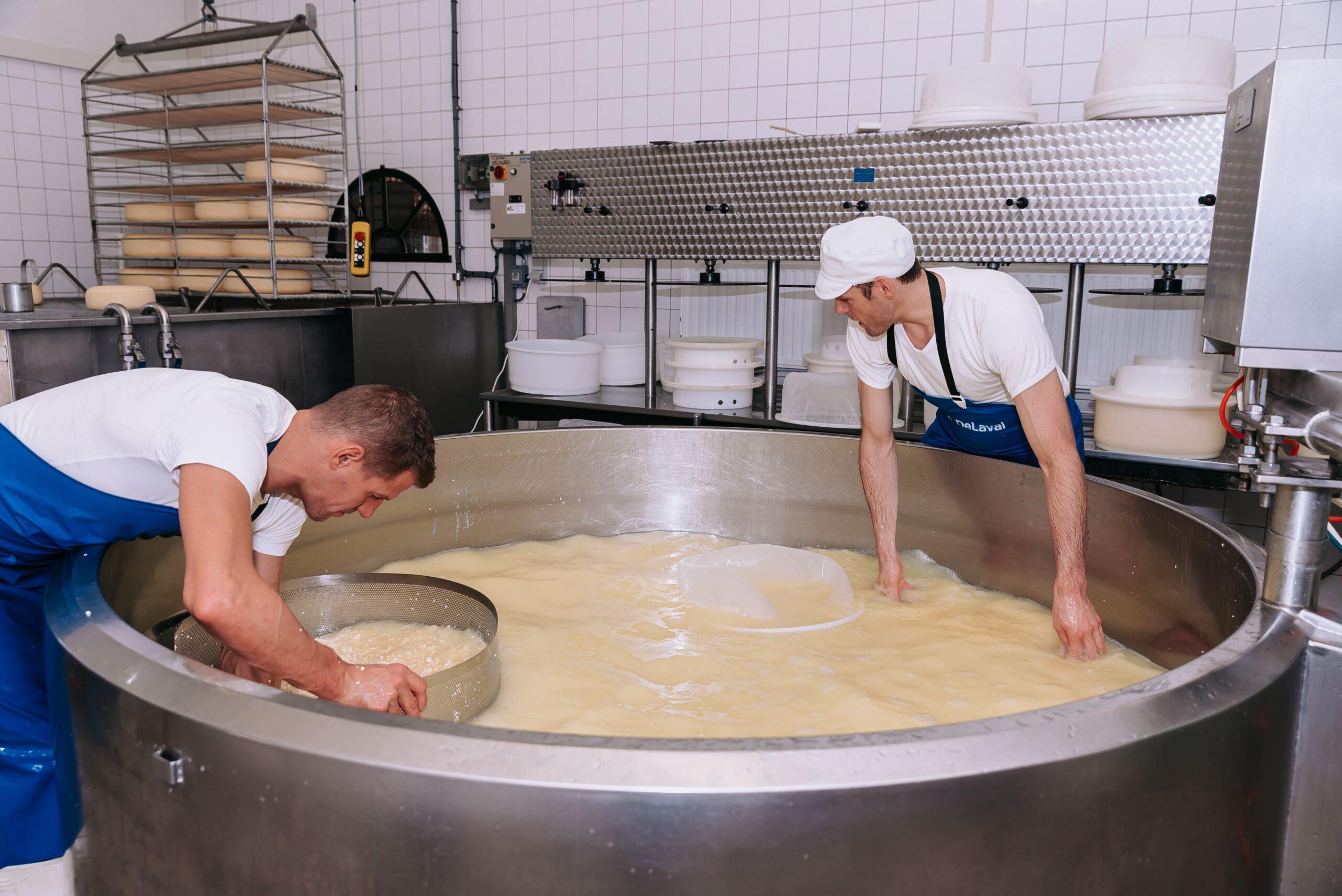 Kaasboerderij Speksnijder | Kaas maken| Online Kaaswinkel